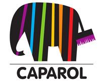 Caparol Info-Forum am 28.02. in Regensburg